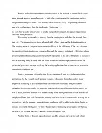 essay about network world