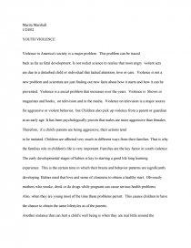 teenage violence essays