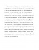 The Cage Essay