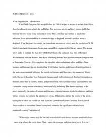 Wide Sargasso Sea  Research Paper Essay Preview Wide Sargasso Sea
