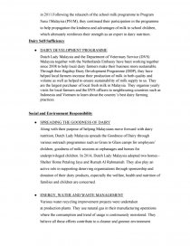 Review the Corporate Social Responsibility - Essay