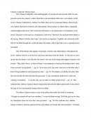 Chinese Cinderella Themes Essay